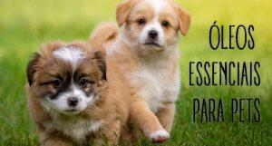 Óleos Essenciais para Pets