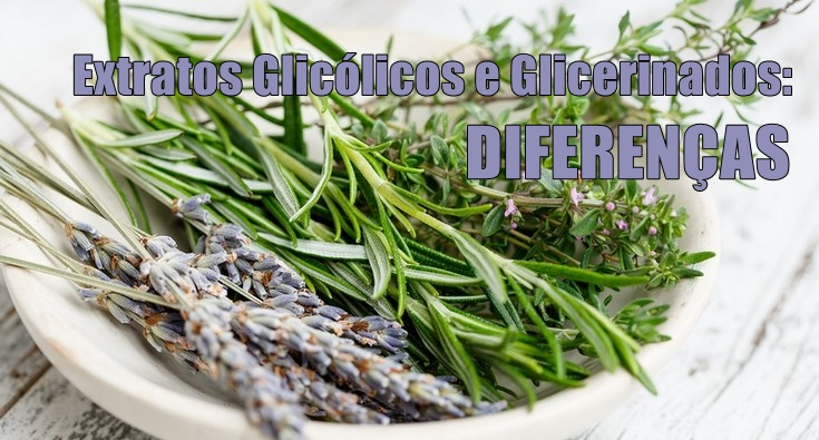 Extratos Glicólicos e Glicerinados