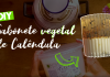 DIY | Sabonete Vegetal de Calêndula – Loja Sabão e Glicerina